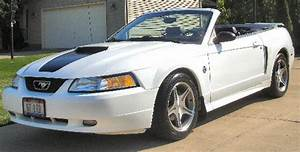 99 mustang gt 35th limited edition - The Mustang Source - Ford Mustang Forums