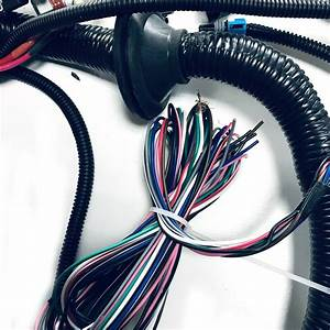 Stand Alone Wiring Harness Ls1 With 4l60e Transmission For