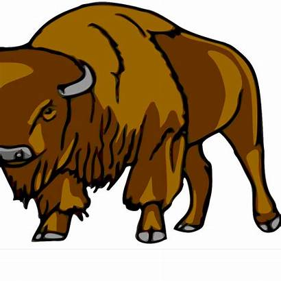 Bison Right Clip Svg Clipart Downloadclipart Icon