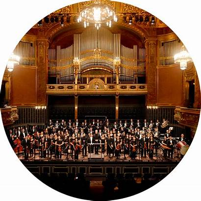 Orchestra Orchestras Youth Trips Types
