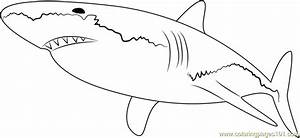 Horn Shark Coloring Pages | Fun Coloring Pages