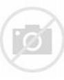 蔡國慶的隱婚老婆,難怪不要天后那英了。 - 每日頭條