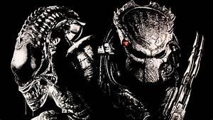 Predator wallpaper