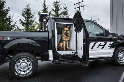 2016 ford F150 SSV police dog k9 unit   The Fast Lane Truck