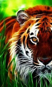 Free download Hd 3d wallpapers for pc full screen HD ...
