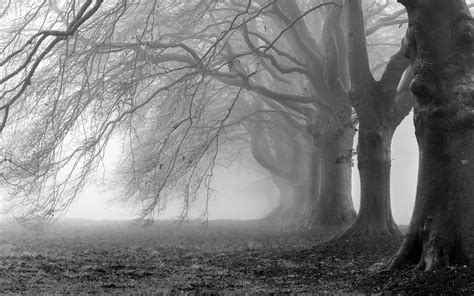 scary backgrounds creepy background pictures 183