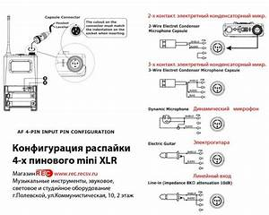 4 Pin Xlr Wiring Diagram