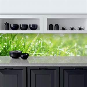 Kuchenruckwand aus glas gras 989704222 for Küchenrückwand glas