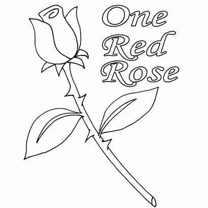Coloring Rose Drawings Designlooter 82kb 550px