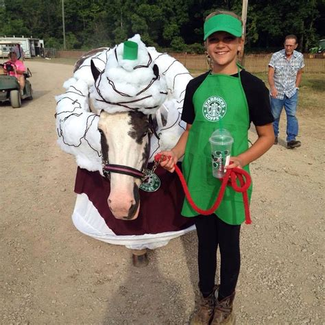 starbucks horse costume submitted  michelle wellington