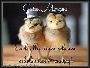 Gute Nacht Sprüche Lustig : ich denke an dich liebeszitate pinterest morgen spr che guten morgen sonntag und ~ Frokenaadalensverden.com Haus und Dekorationen