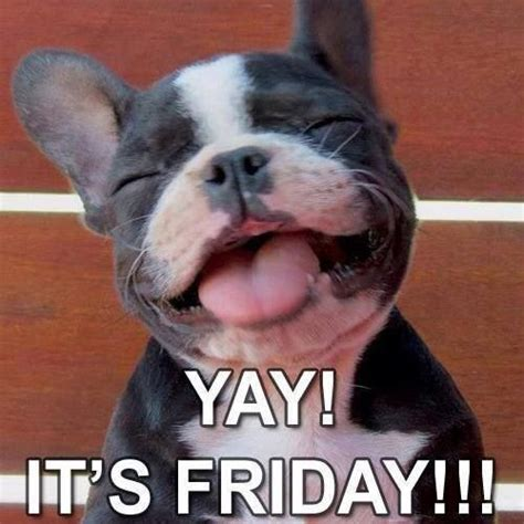 yay  friday pictures   images  facebook