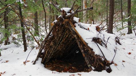 build  survival winter shelter