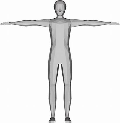 Human Clipart Poly Low 3d Male Outline