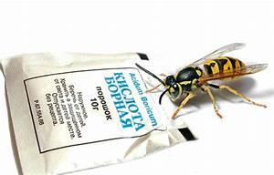 Gift Für Wespen : mittel von wespen ein berblick ber die effektivsten drogen ~ Whattoseeinmadrid.com Haus und Dekorationen