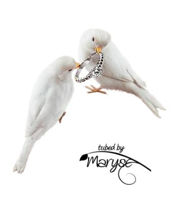 PSP Tubes & créations de Maryse: Tubes Mariage