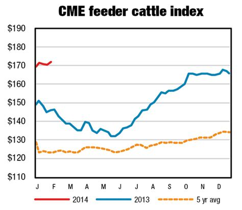 cme feeder cattle cow slaughter likely to affect cow inventory in 2014