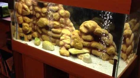 d 233 cor polystyr 232 ne fait maison pour aquarium biotope malawi