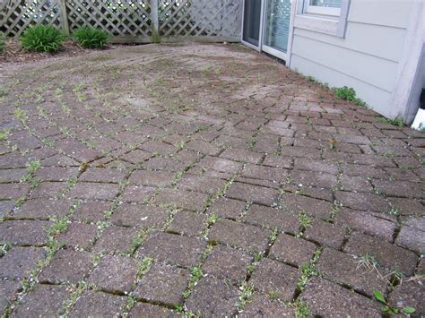 how to prevent weeds from destroying patio pavers
