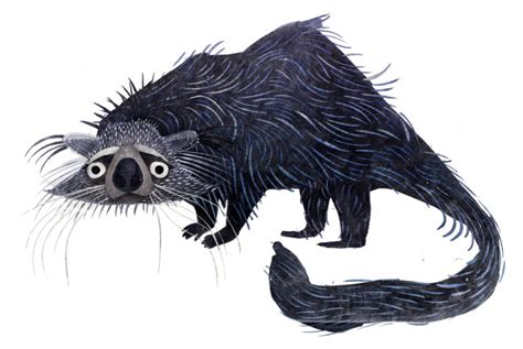 The BINTURONG • Brendan Wenzel | Brendan Wenzel • Illustration