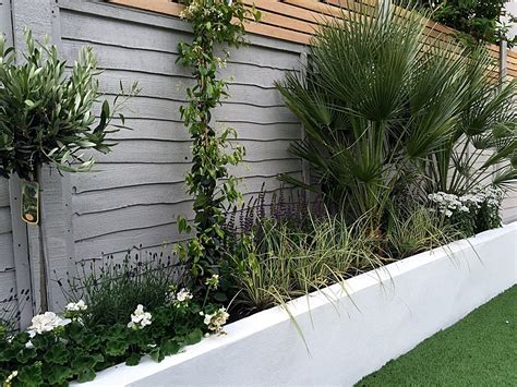 Render Walls Planting Small Garden Design Painted Fence