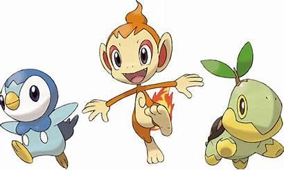 Pokemon Starters Piplup Chimchar Sinnoh Turtwig Starter