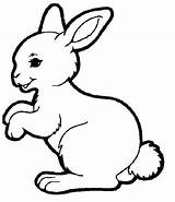 Coloring Bunny Spring Rabbit Colouring Hutch Animal Easter Template Super Animals Printable Bunnies Rabbits Templates Drawing sketch template