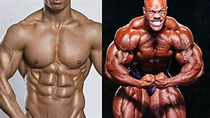 Is Testosterone A Steroid   Difference Between