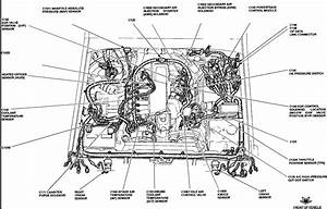 95 Ford F 150 4 9 Engine Diagram