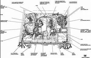 1995 Ford F 150 4 9 Engine Diagram 3412 Archivolepe Es