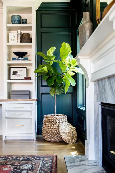 twelve stylish indoor plant ideas  city living