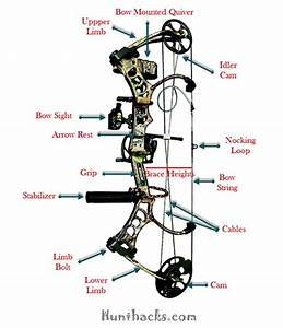 How To Choose A Compound Bow  U0026 Buying Guide