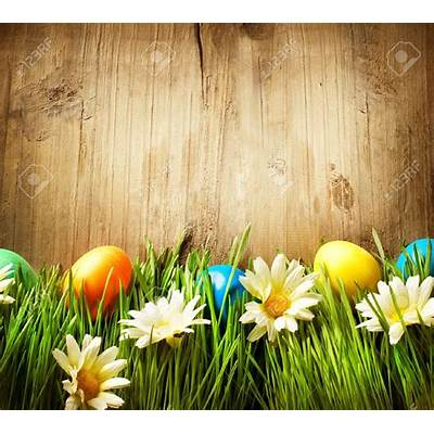 Real Easter Eggs In Grass – Happy 2018