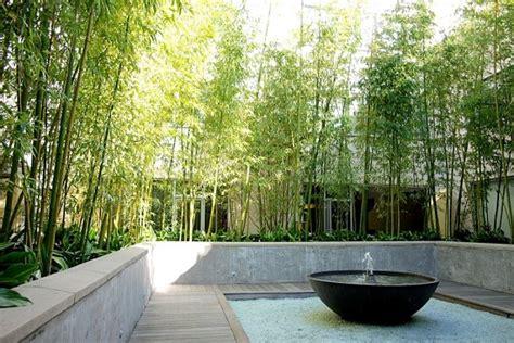 bamboo landscape plants 70 bamboo garden design ideas how to create a picturesque landscape