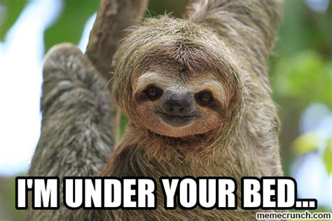 Sloth Meme Images - sloth animal funny quotes quotesgram