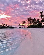 Pink Sunset Beaches Wallpaper