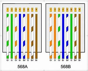 Images Of Gigabit Ether Wiring Diagram Wire