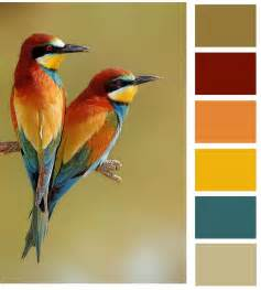 Love Birds Color Scheme