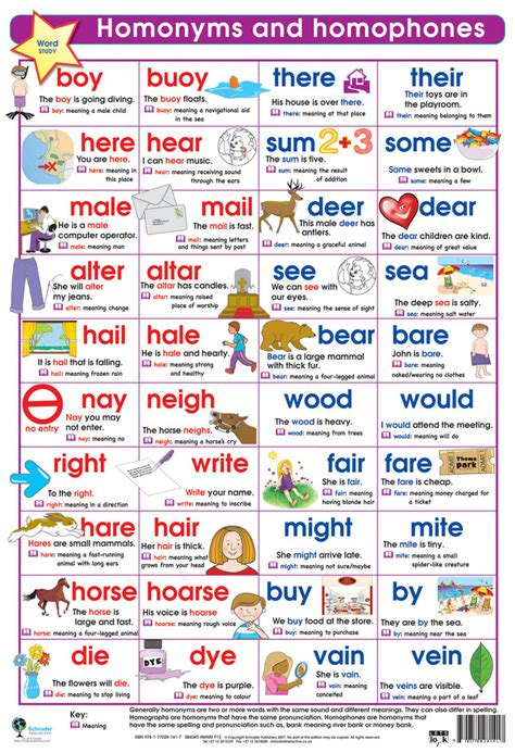 Homonyms And Homophones  English  Pinterest  Grammar Worksheets, English Grammar And Worksheets