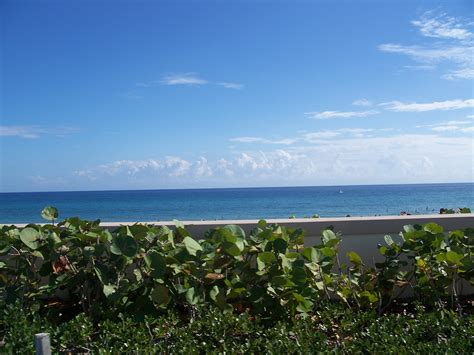 Rotelli S Boynton Fl by Things To Do In Boynton Fl Today S Events Wikido