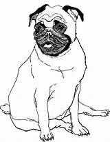 Pug Coloring Fortnite Trending Days sketch template