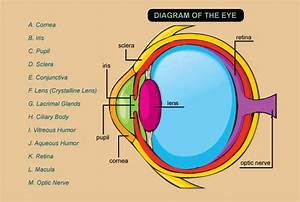 Pin By Charlie Love On Hello  I Am An Optometrist