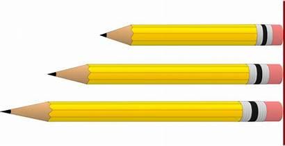 Length Clipart Comparison Pencils Lengths Clip Short