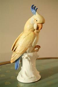 Schattenfugenrahmen Selber Machen : die besten 25 ara papagei ideen auf pinterest papagei spielzeug papagei englisch und projekt ara ~ Eleganceandgraceweddings.com Haus und Dekorationen