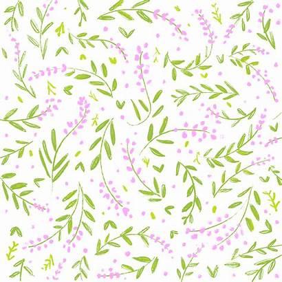 Pattern Flower Floral Bright Bold Transparent Clipart