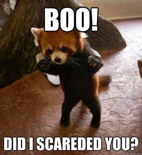 Do You Boo Boo Meme - just drop boo unity forum