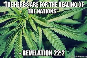 Quotthe Herbs Are For The Healing Of The Nations