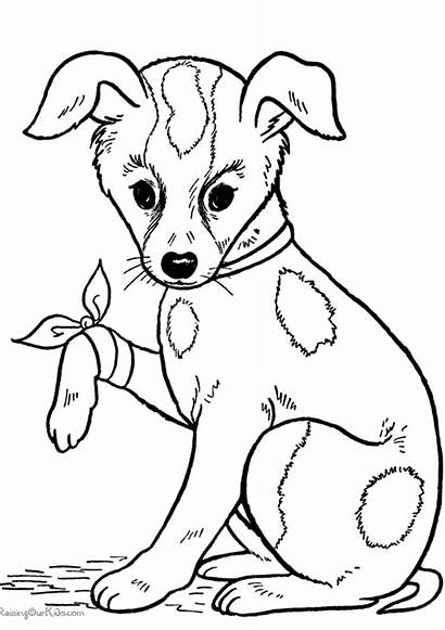 Coloring Dog Dogs Pages Printable Puppies Ears