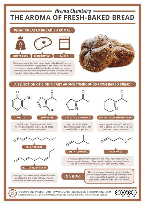 aroma chemistry  smell  freshly baked bread