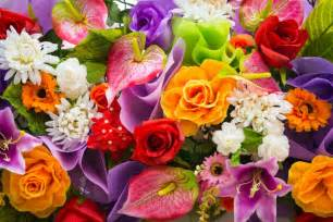 wedding flower bouquet as 14 flores mais populares em inglês da live